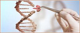 蛋白研究相关产品