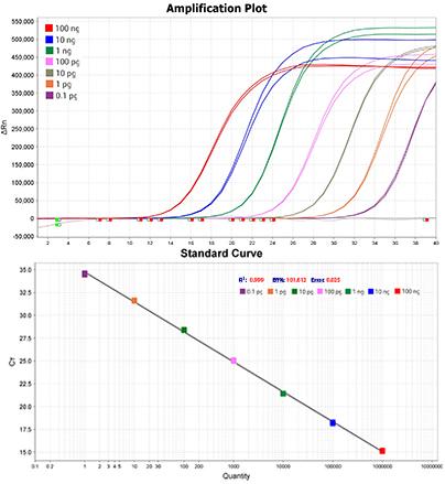 qPCR mix荧光定量PCR Mix